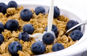 oatmeal_blueberries