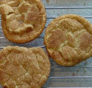 gluten free casein free snickerdoodles